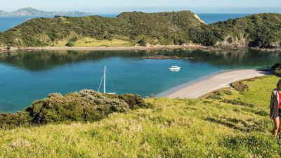 This Incredible Bay of Islands In New Zealand Is Truly A Destination Like No Other!