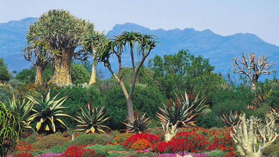 The Top 5 Most Stunning & Secret Gardens Found In Africa!