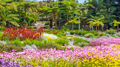 The Top 5 Most Beautiful Secret & Botanical Gardens In Western Australia!