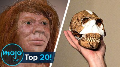 Top 20 Biggest Scientific Discoveries of the Century So Far