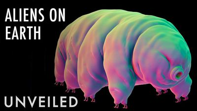 What If Tardigrades Are Alien Life Forms? | Unveiled