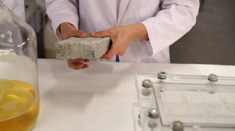 Waste not: South Africa makes world's first human urine brick