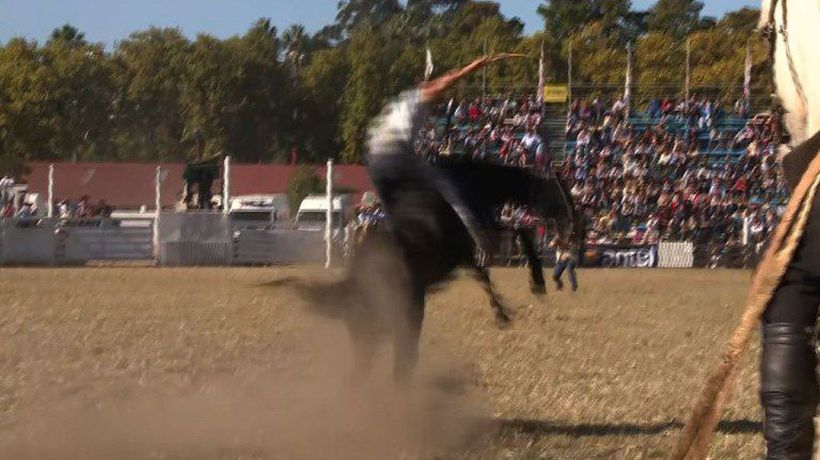 Uruguayan rodeo finishes with two dead horses, sparking outrage