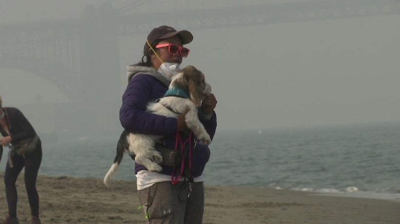 Bay Area residents coping with wildfire smoke
