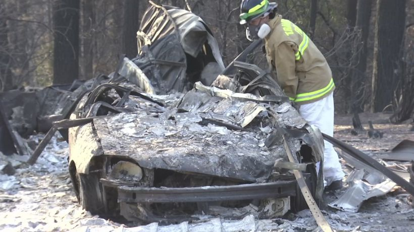 Search teams with cadaver dogs seek fire victims