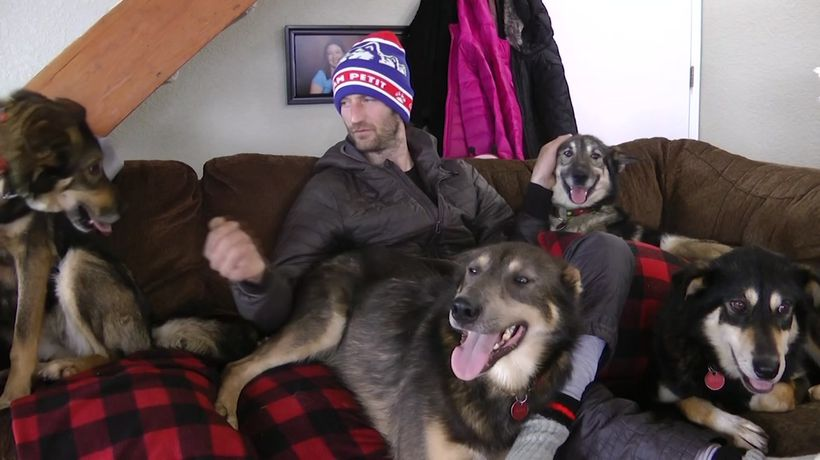 Iditarod musher says he never mistreated dogs