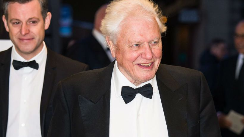 Sir David Attenborough turned up to awards ceremony on wrong night