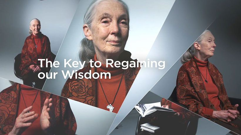 World-Changing Ideas - The Key to Regaining Our Wisdom