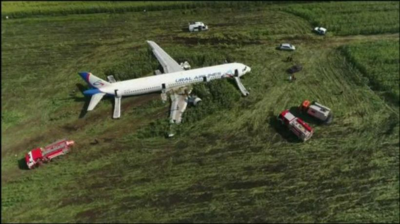 Bird strike forces Russian airliner to crash-land