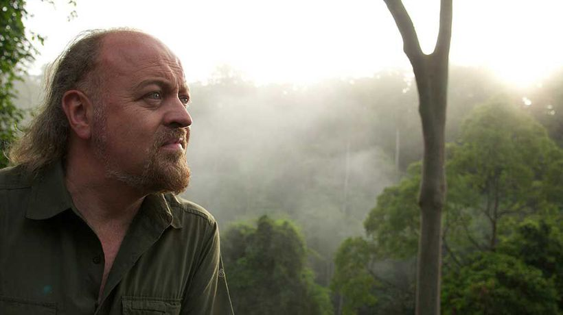 Bill Bailey's Jungle Hero - Land of the Bird Of Paradise