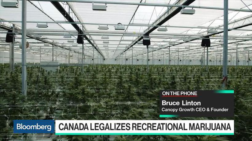Bloomberg Technology - Canopy Growth CEO Says Lines Are Around the Block for Cannabis