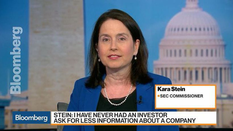 SEC Commissioner Stein on Corporate Earnings Reports, Crypto Fund Proposals