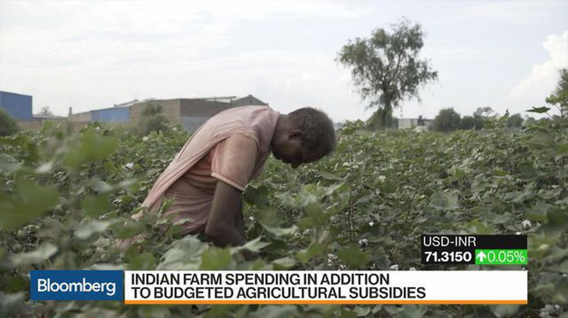 Bloomberg Markets: Asia - India Said to Mull Plan to Pay Cash to Farmers