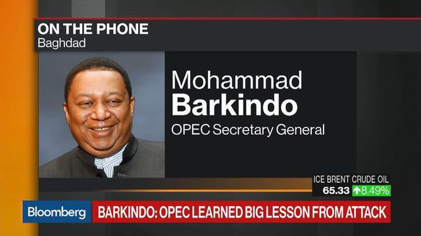 Barkindo: OPEC Learned a Big Lesson From the Attack