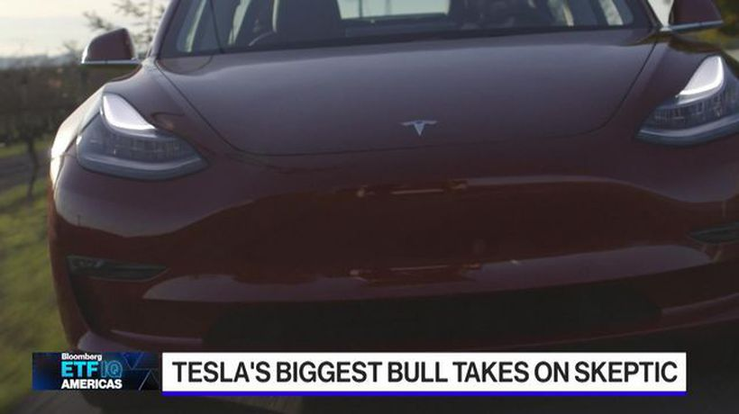 Tesla Bull Wood Faces Off Against Tesla Bear