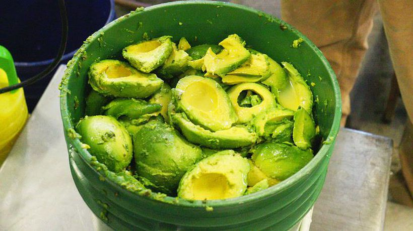 Los Angeles is obsessed with this avocado beer