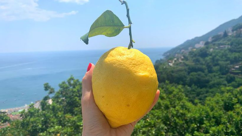 How traditional Limoncello is made in Italy