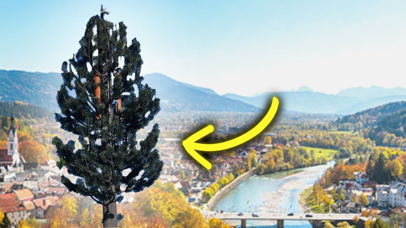 How Fake Trees Took Over America