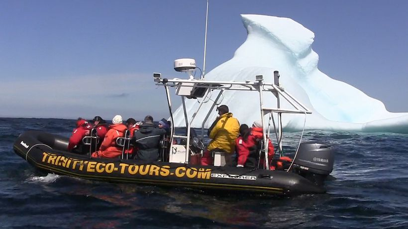 Iceberg tours draw visitors as Arctic warms