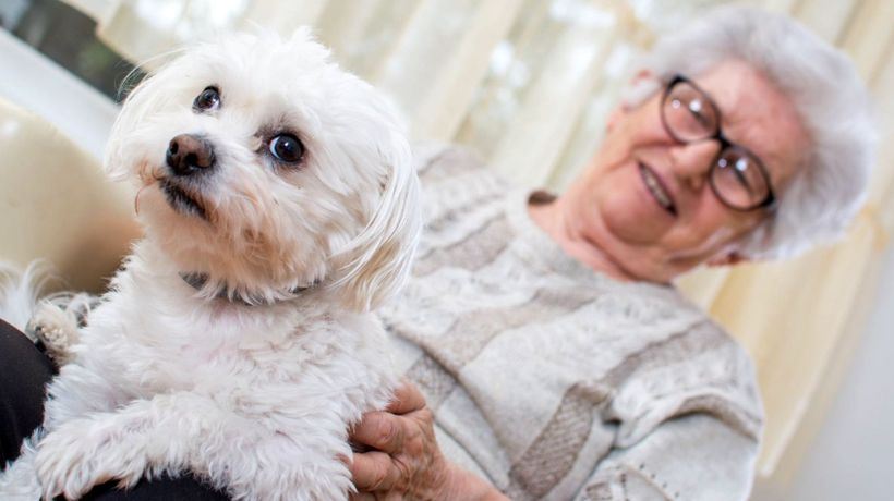 Having a pet 'could reduce psychological lockdown stress'