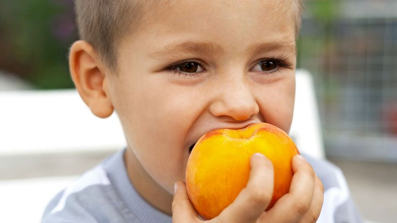 Healthy eating habits can begin in first year of life