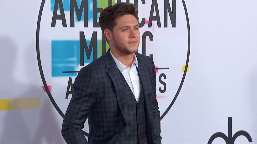Niall Horan and Hailee Steinfeld reportedly split