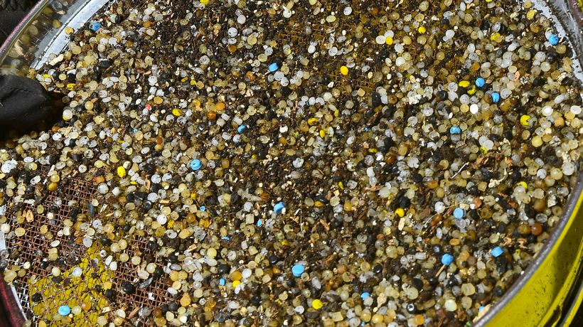 What are Nurdles and Why Should We Care?