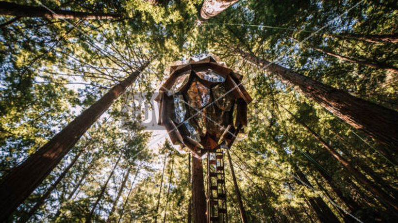 Pinecone-Shaped Treehouse That Provides Stunning 360-Degree Views Goes Up For Sale