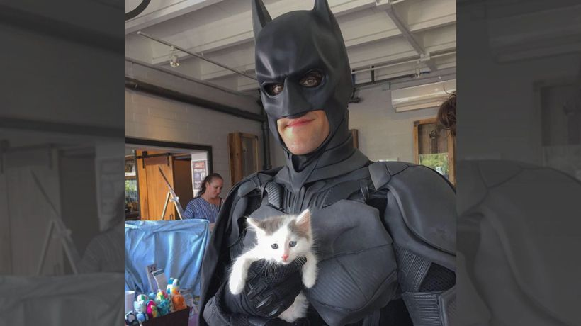 Real-Life Batman Rescues Shelter Animals From Euthanasia And Finds Them Forever Homes