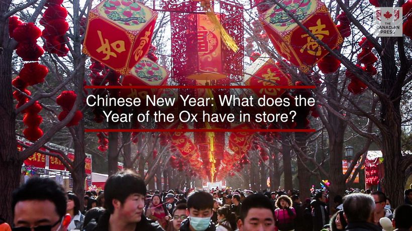 Chinese New Year What does the Year of the Ox have in store