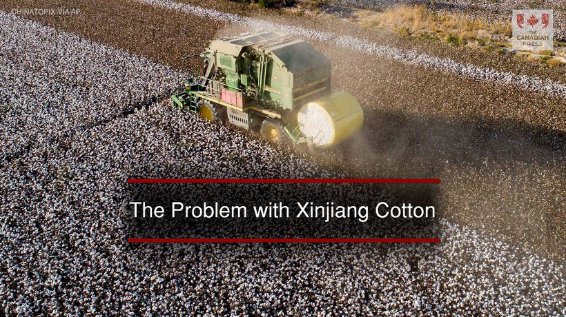 The Problem with Xinjiang Cotton