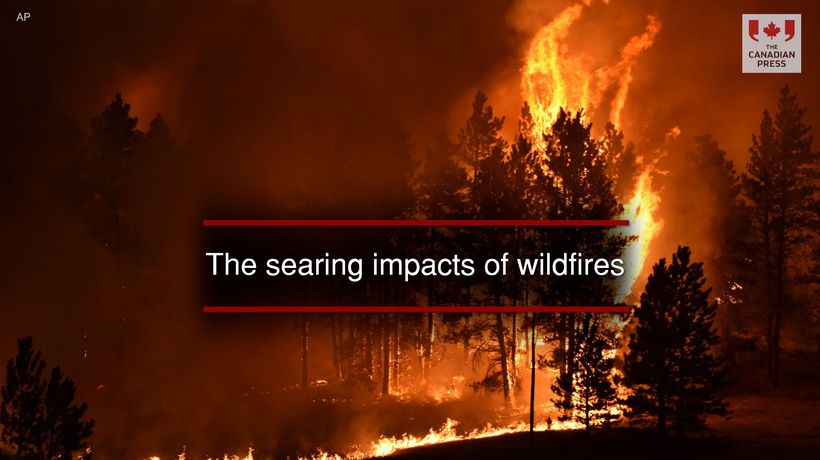 The searing impacts of wildfires