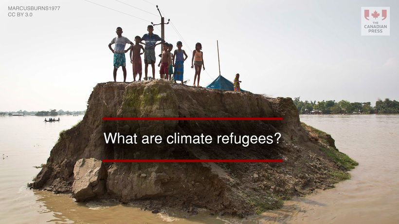What are climate refugees?