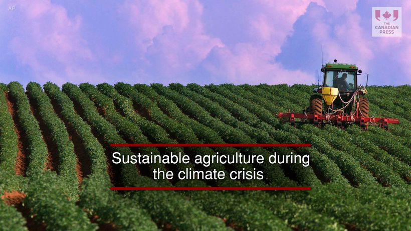 Sustainable agriculture during the climate crisis