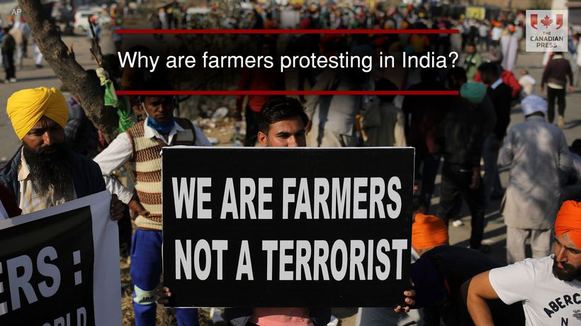 Why are farmers protesting in India?