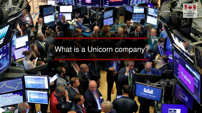 What is a Unicorn company?