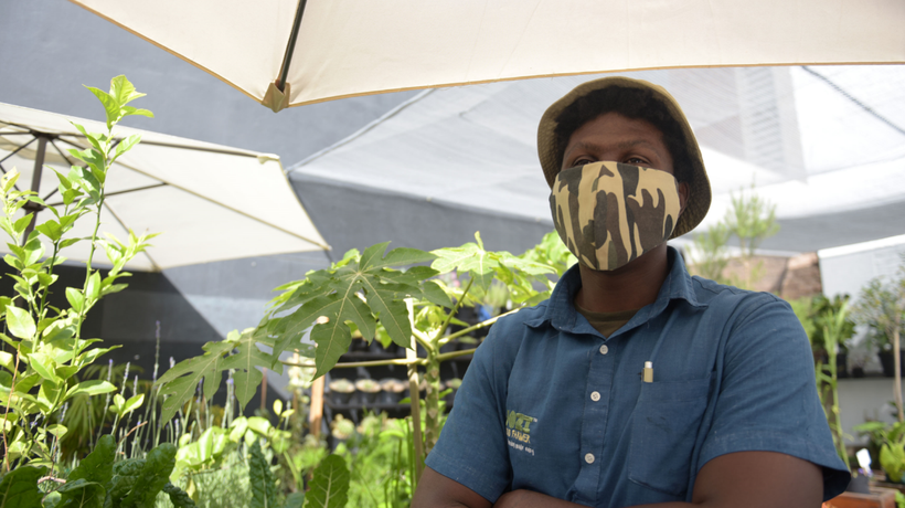 The JFF rooftop farm is a green oasis situated in the Johannesburg CBD.