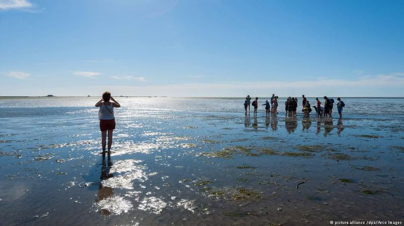 Discovering the Wadden Sea