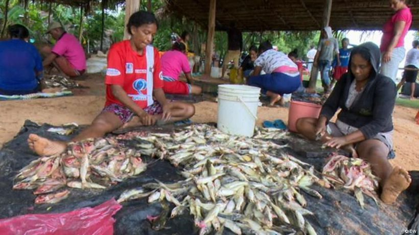 Colombia - the wetlands of Rio Magdalena under threat
