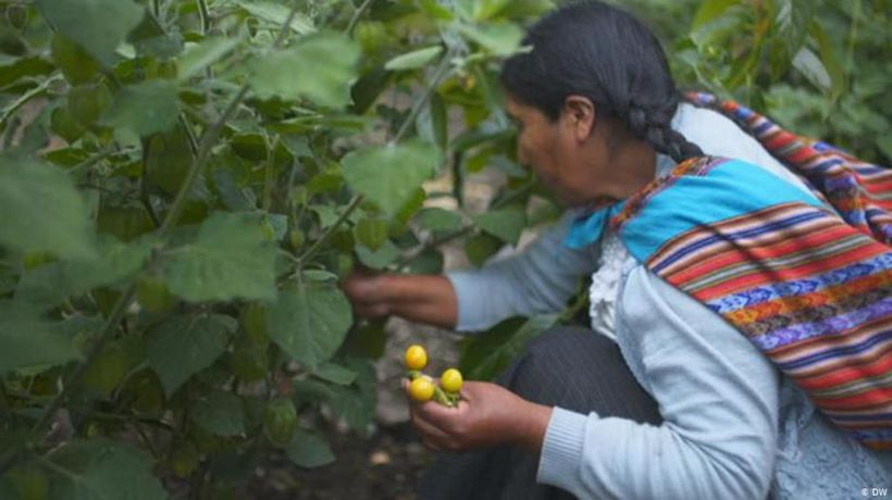 Peru: Empowering mountain communities
