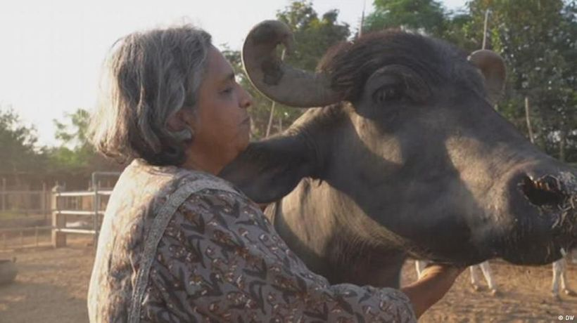India: Caring for people and animals
