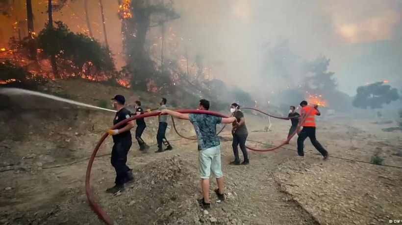 Turkey wildfires: Are politics to blame for the devastation?