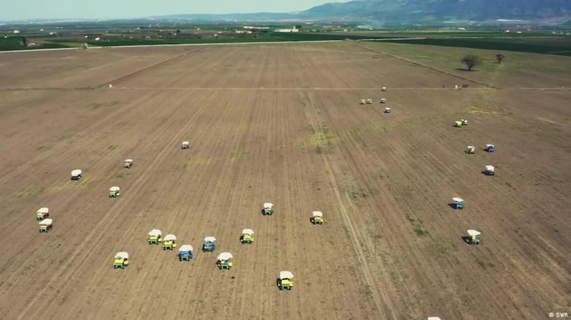 Farming in Italy is at a crossroads