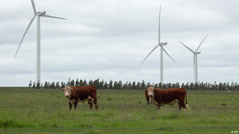 Uruguay: The clean energy transition