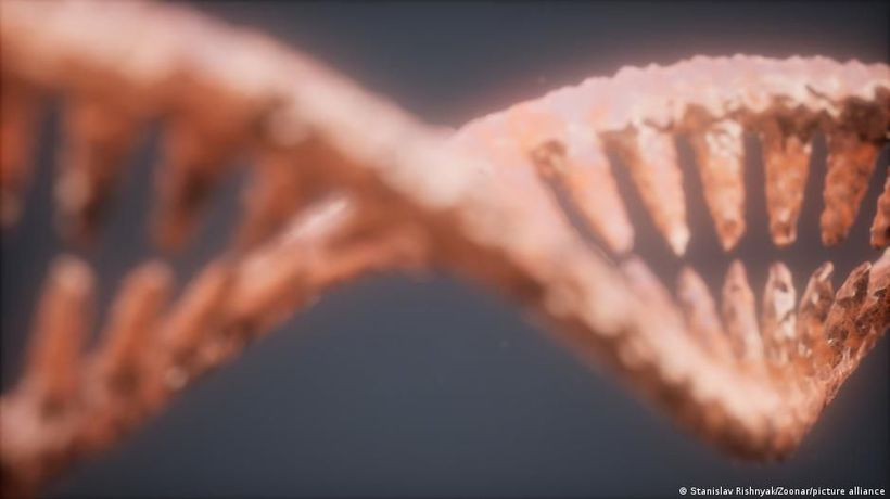 Can our DNA change?