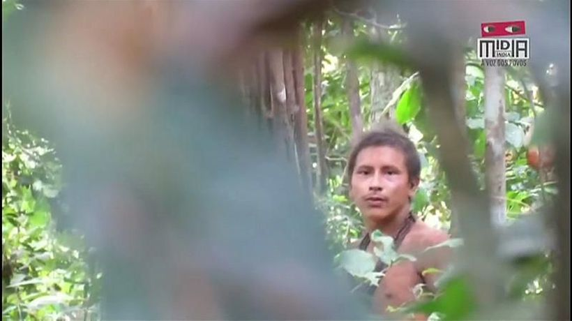 Watch: Footage of uncontacted Amazon tribe members emerges as deforestation expands
