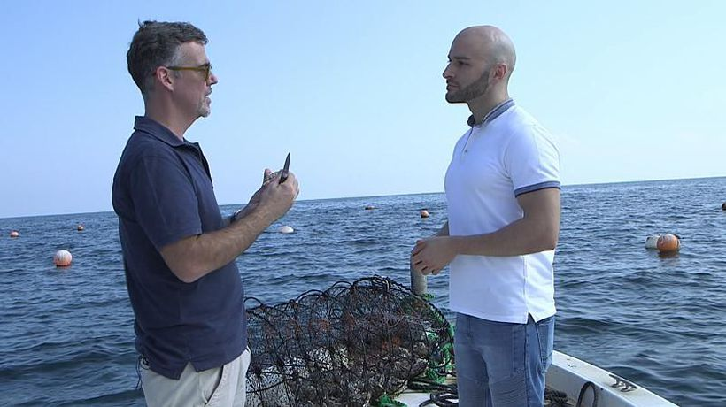 Can UAE oyster farmers rival their global competitors?