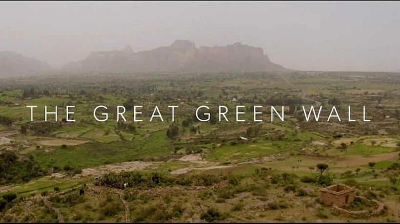 The Great Green Wall: Documentary aims to raise awareness of troubled climate project