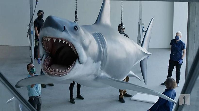 Fibreglass shark linked to Jaws movie is installed at new musuem
