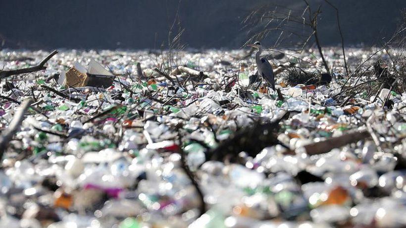 Biodegradable plastic may not degrade as quickly as expected
